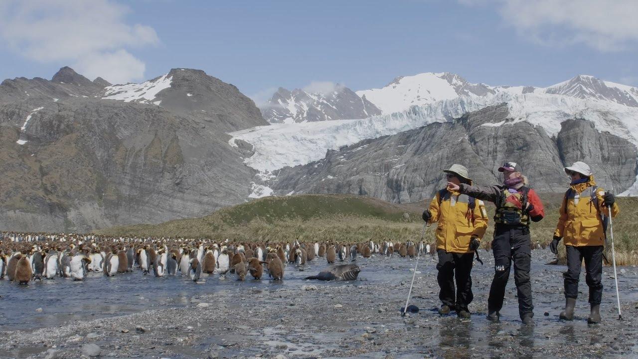 【動画】南極クルーズベストルート