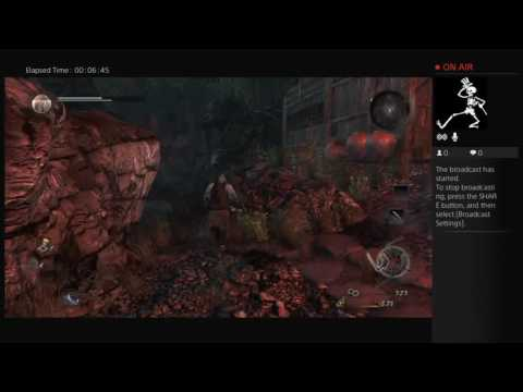 Nioh beta with a new build