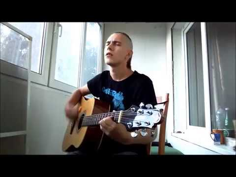 Basf Custer Song#3 Stone Sour (Acoustic Cover)