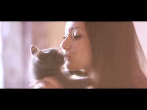 клипы про любовь клип 2011
