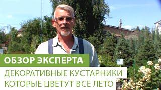 видео Ландшафтный дизайн участка в Москве, отзывы, цены, фото