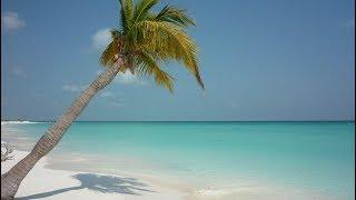 Best Beaches in Cuba. YOUR Top 10 best Cuba beaches