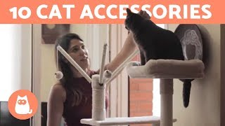 10 Best ACCESSORIES for CATS