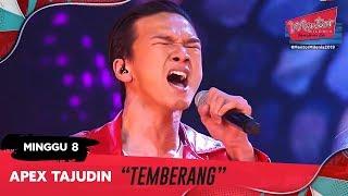 Temberang - Apex Tajudin l Minggu 8 | Mentor Milenia 2019