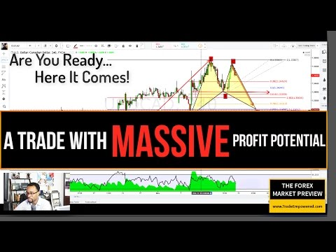 FOREX TRADING: A Trade With MASSIVE Profit Potential
