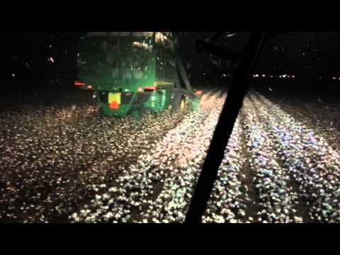 Cotton picking Altus, OK at 9:30 p.m. The work never stops