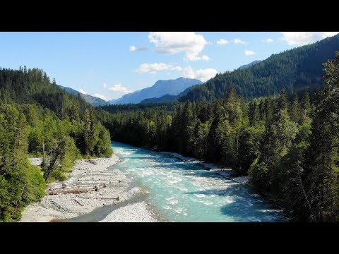 Restoring A Spawning Ground For Chinook Salmon In BC