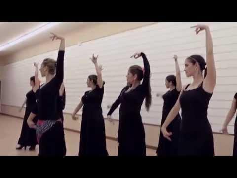 Dance Studio BailaFlamenco,Miami Fl.