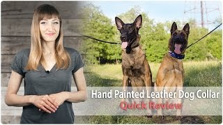Hand Painted Leather Dog Collar for Walking and Training - Review