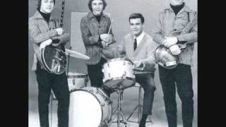 Download The McCoys, Come on lets go, stereo.wmv