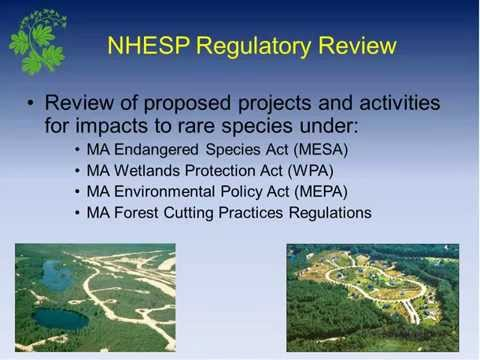 Biodiversity and land conservation at the Mass. Natural Heritage & Endangered Species Program