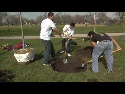 Chicago Park District April 2013: Earth Day
