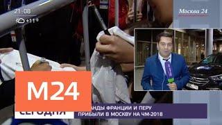Смотреть видео Болельщики встретили сборные Франции и Перу в Шереметьево - Москва 24 онлайн