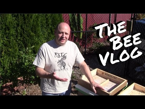 Winterizing Beehives - Bee Vlog #151 - Oct 4, 2014