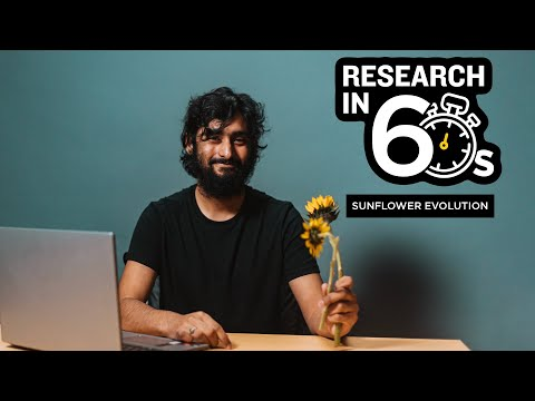 Feed image for Research in 60 Seconds: Using Algorithms to Study Sunflowers