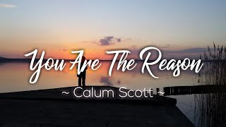 Gambar cover Lagu Barat Sedih, You Are The Reason - Calum Scott || Cover by Alexandra Porat (Lirik + Terjemahan)