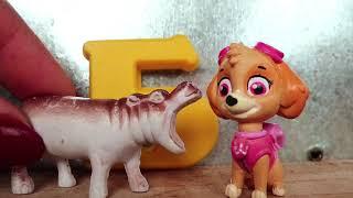 Видео для малышей. Изучаем буквы и животных вместе со Скай