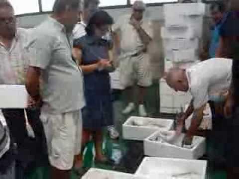 """""""Pescaito vivo de la Bahia de Cadiz"""" --- """" Alive Pescaito of the Bay of Cadiz """""""