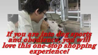 Elite Dog Show - Dog Show And Sports Store - Dog Show Tips