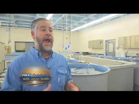 FOX10 OUTDOORS:  We headed to the Alabama Marine Resources Hatchery