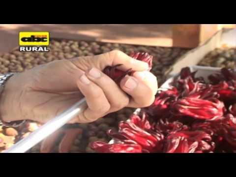 7. Produccion de rosella