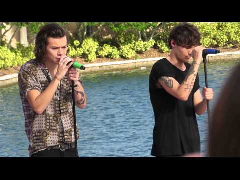 1D Orlando - Night Changes | Louis & Harry (Today Show)