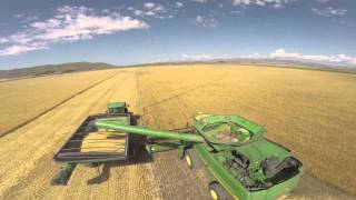Silver Spring Land & Cattle - Barley Harvest '14 // GoPro Hero3+ - DJI Phantom 2