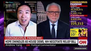 Andrew Yang: Next few days are crucially important for getting stimulus passed