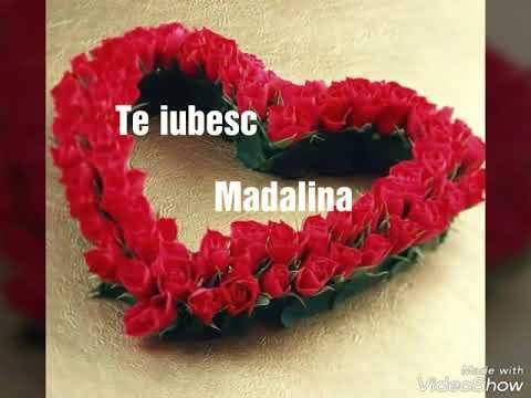 Nicolae Guta si Denisa - Care floare de pe lume [oficial video] 2016 colaj
