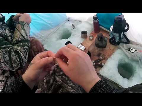 рыбалка с лехой на енисей показать видео