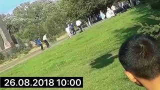 Массовая драка на свадьбе в Семее попала на видео