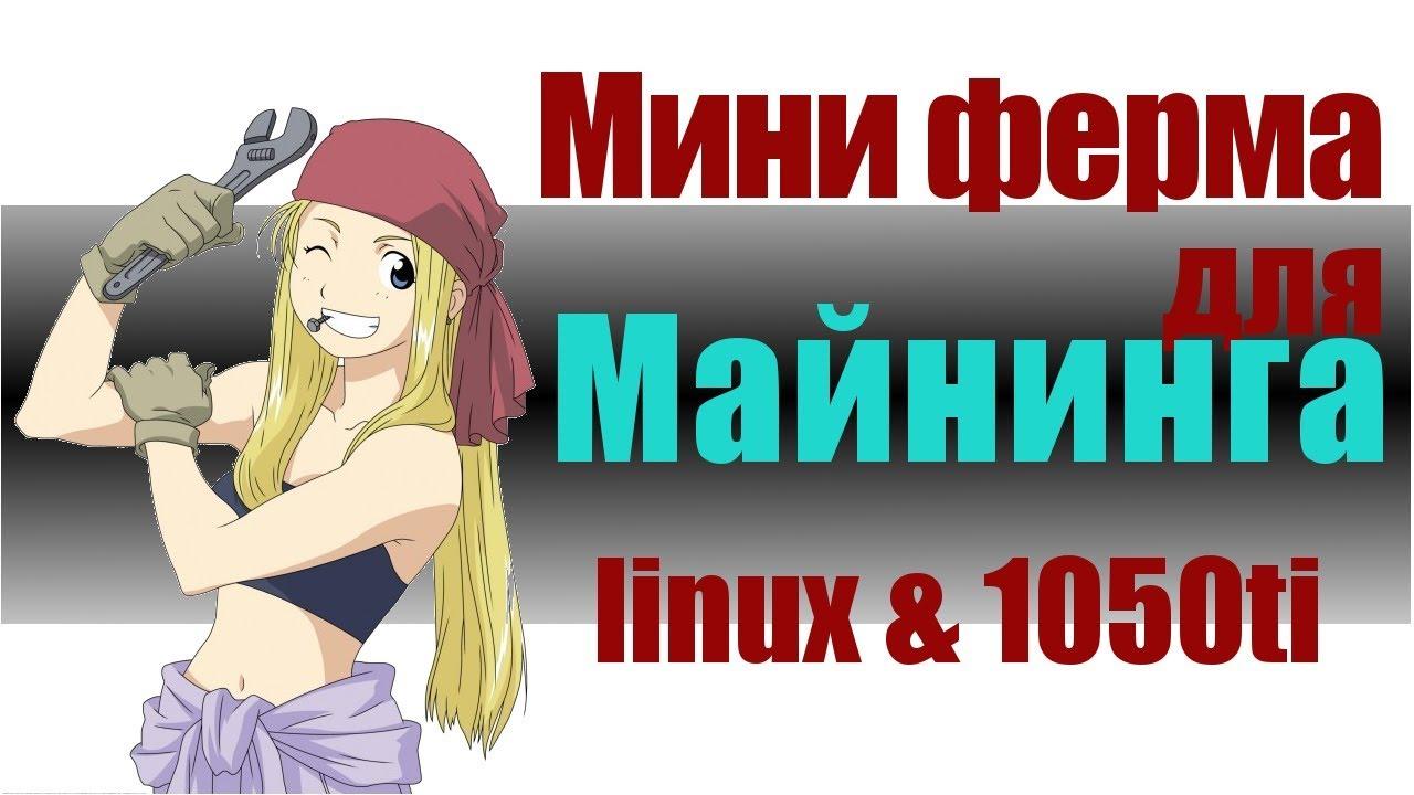 мини майнинг ферма 2х1050ti и linux