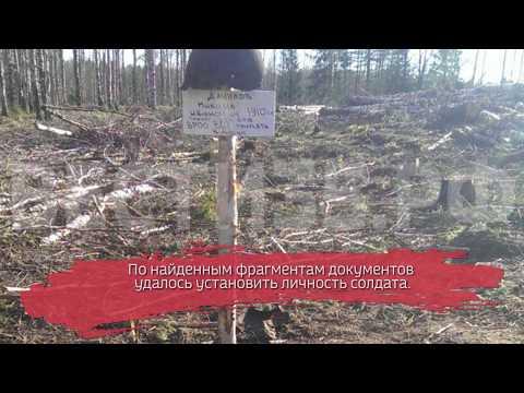 Вологодские поисковики подняли останки бойца Красной армии