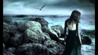 ich bring dich durch die nacht - reinhard mey  (super-video)