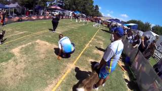 Frankston Storm Tornadoes Flyball Team At The Canberra National 2015