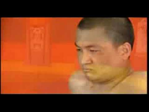 Tibetan Yogi