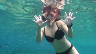 フィリピンのバリの海での水中映像です。 水着で餌付けしています。