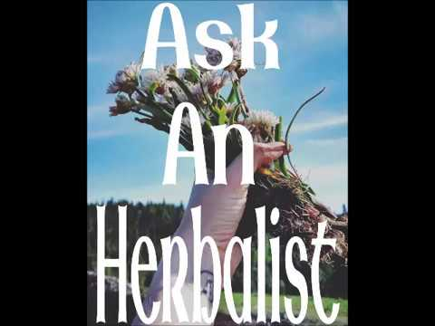 Ask An Herbalist With @She_is_of_the_woods Episode 1