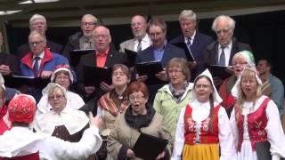 Nationaldagsfirande i Horndal 2015