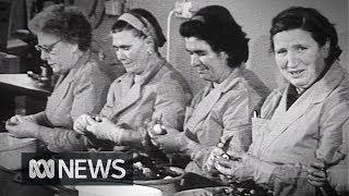 Onion peelers replaced by machines (1969)   RetroFocus