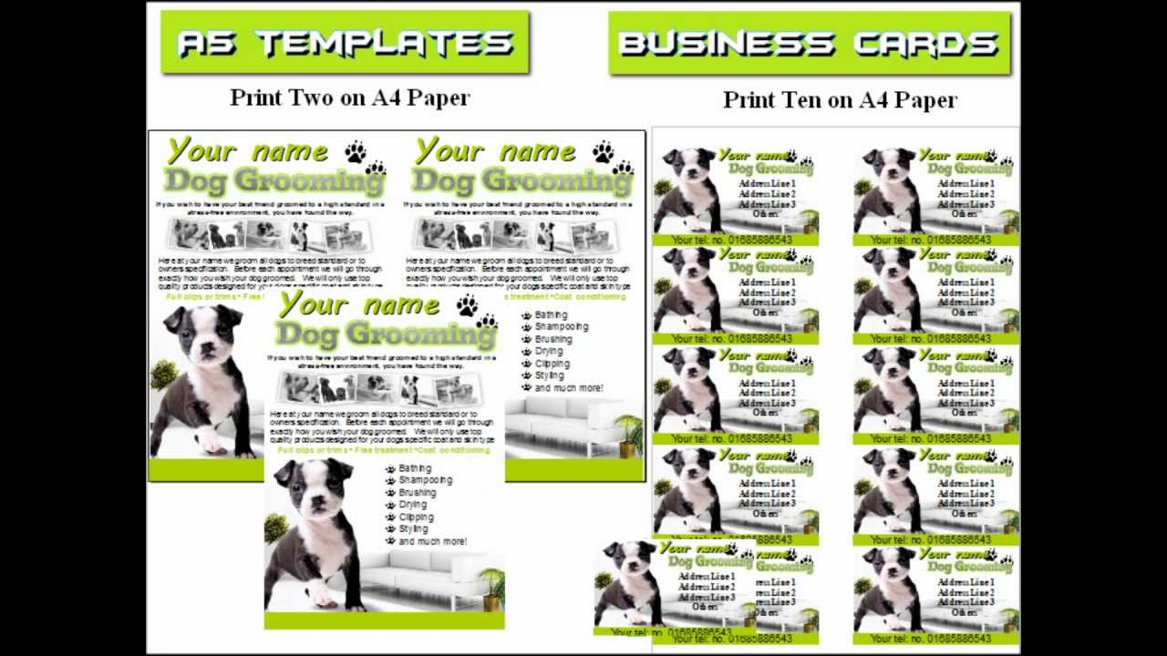 Dog Grooming Flyer Leaflets YouTube
