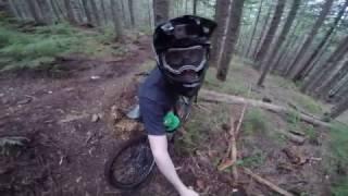 Sunshine Coast Rake and Ride