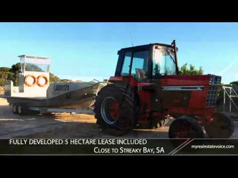 Oyster Lease with Commercial Property Business for Sale - Streaky Bay, SA