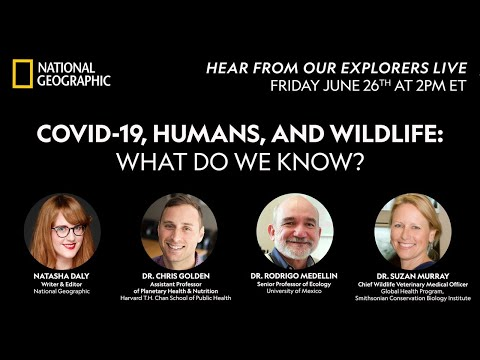 COVID-19, Humans, and Wildlife: What Do We Know? - Live | National Geographic