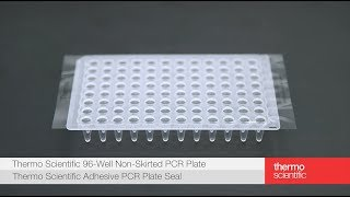 Learn how to seal a Thermo Scientific PCR plate