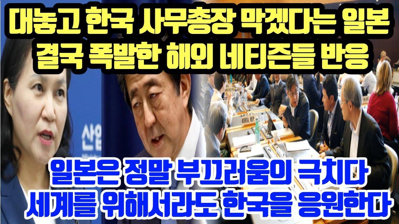 [단독해외반응] 대놓고 한국 사무총장 막겠다는 일본, 결국 폭발한 해외 네티즌들 반응//일본은 정말 부끄러움의 극치다