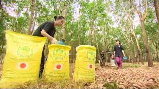 Japanese Organic Fertilizer (www.cambodiaorganic.com)