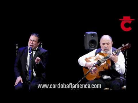 José Anillo | Premio Nacional de Cante 2016