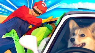 Superheroes and Happy Dog TAXI Drive