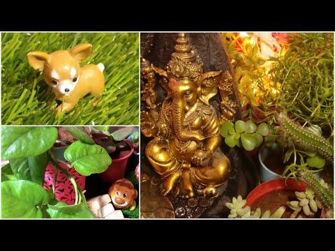 Indoor Plants Home Decor Ideas | Decorate Home with Plants | Home Decor Ideas |Anshu's Passion